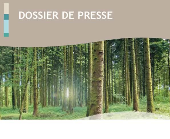 DDP Projet Poligny