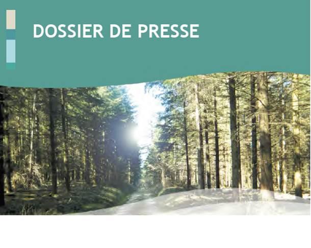 DDP Projet Rousset
